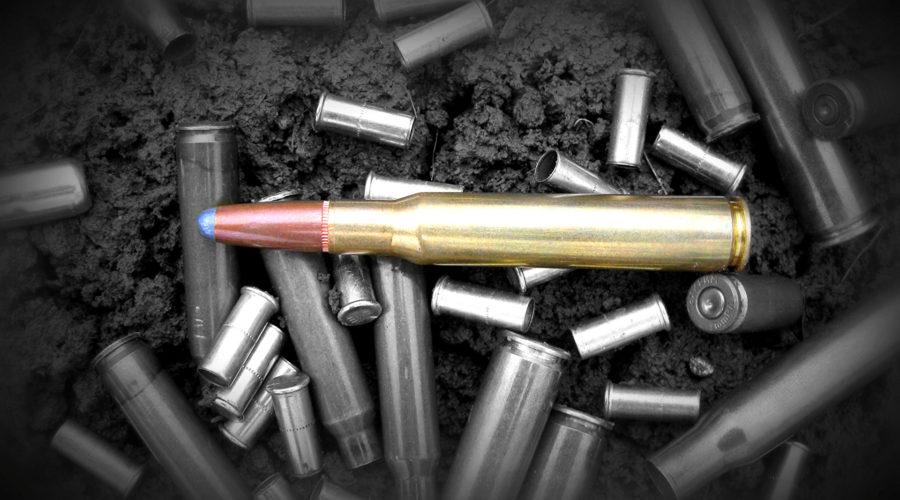 Aplicação do princípio da insignificância na posse ou no porte de munição.