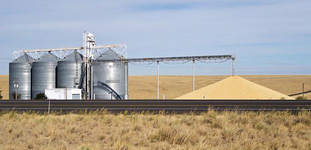 TST mantém condenação de fazenda por morte de empregado que caiu de silo